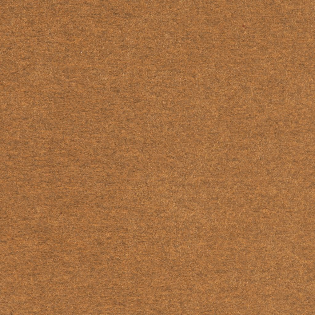 Sand flat image