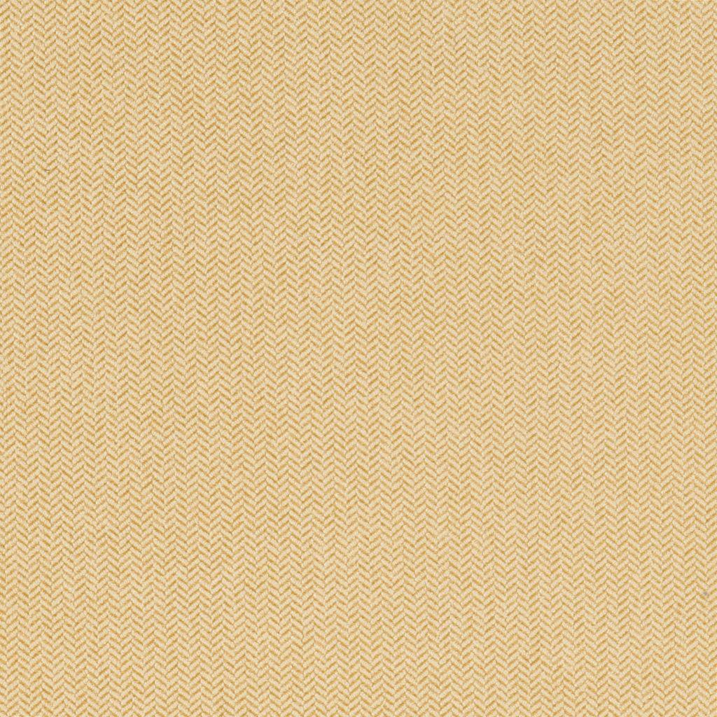 Lemon flat image