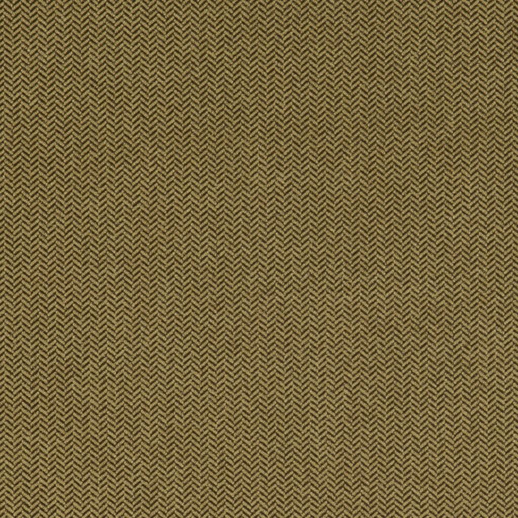 Moss flat image