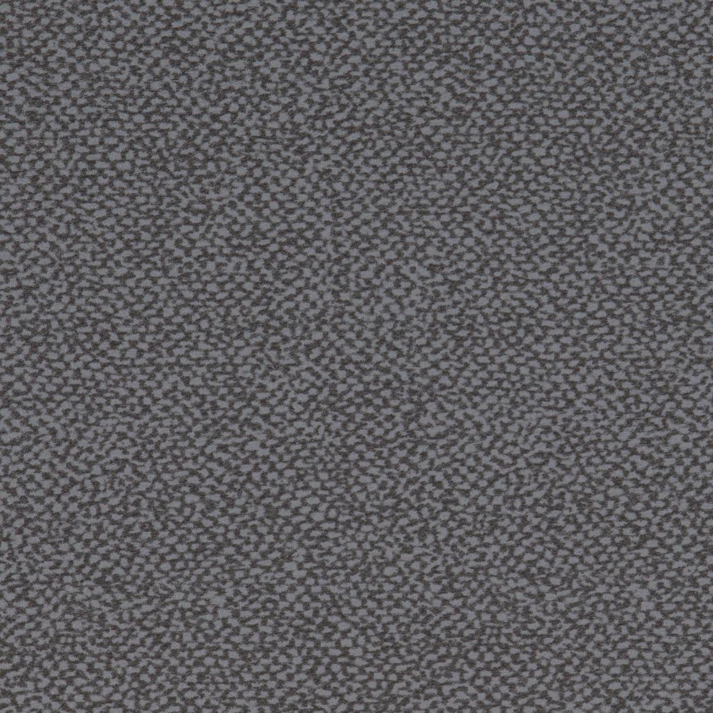 Aquarius Grey
