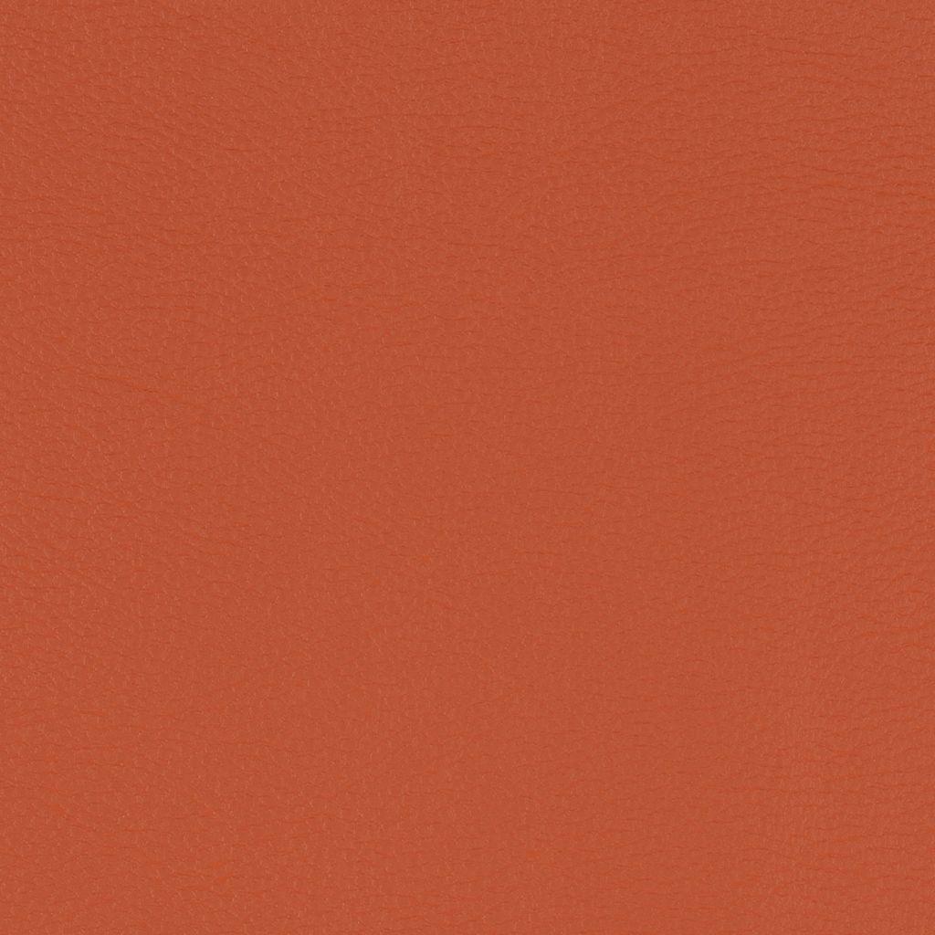 Burnt Orange flat image