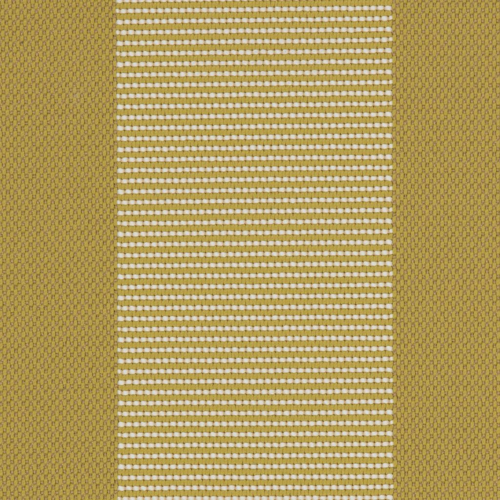 Stripe Mustard