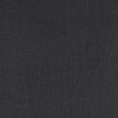 Vinyl Black
