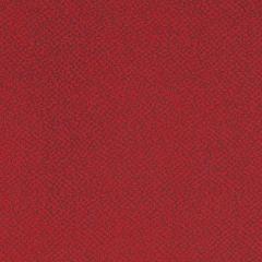 Aquarius Red