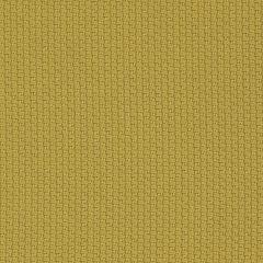 Weave Mustard