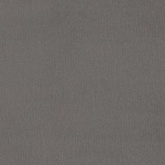 Primeira Grey